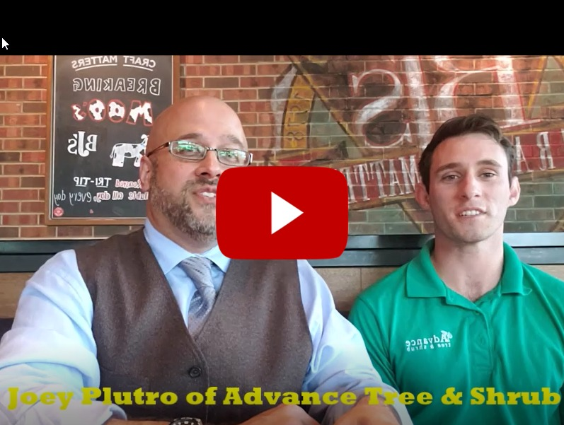Raleigh Estate Planning Attorney Jeffrey G. Marsocci interviews arborist Joey Plutro of Advance Tree and Shrub